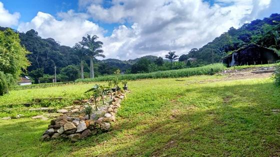 Paisagem da rota do Café Verde do Ceará Blog Vem Por Aqui