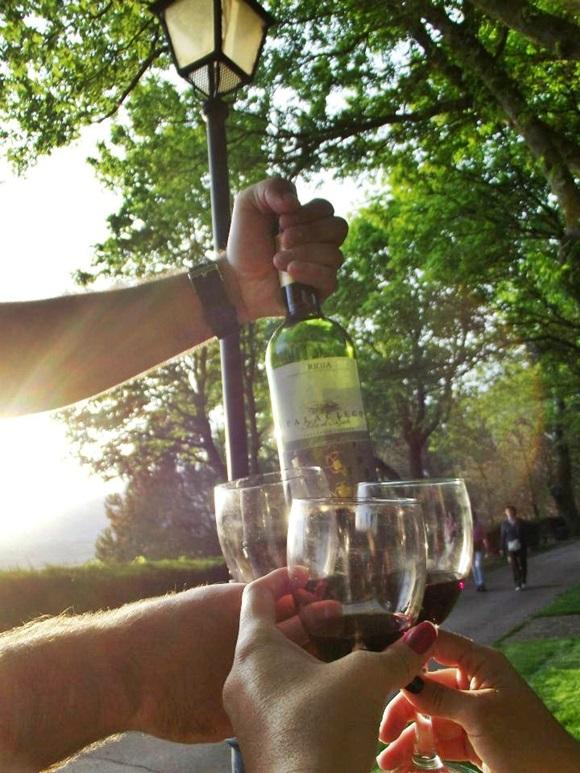 Garrafa de vinho e taças em frente a um raio de luz Blog Vem Por Aqui