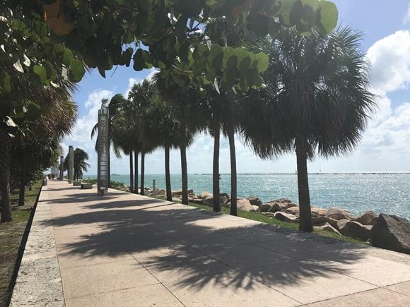 Calçadão do South Pointe Park com árvores dos lados e vista do mar Blog Vem Por Aqui