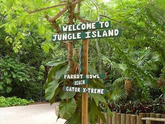 Placa de madeira em árvores dizendo Welcome to Jungle Island e placas indicando caminhos Blog Vem Por Aqui