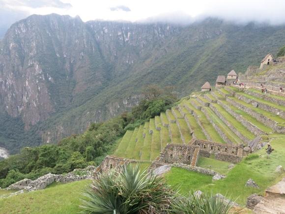 Escadaria de pedra com grama de Machu Picchu com montanha ao fundo Blog Vem Por Aqui