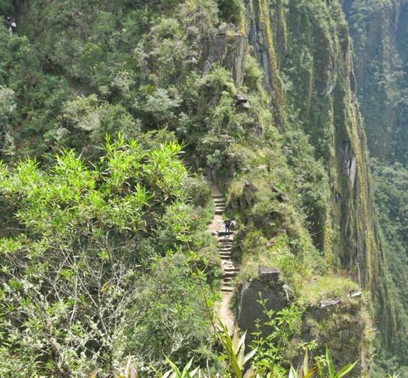 Vista do alto de uma passagem estreita no meio de uma floresta com uma pessoa descendo Blog Vem Por Aqui