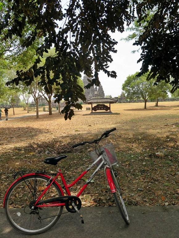 Bicicleta parada embaixo de uma árvore com templo bem ao fundo Blog Vem Por Aqui