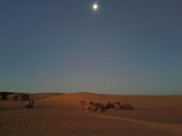Dia amanhecendo, céu começando a clarear com sol pequeno, no alto e camelos deitados ao longe Blog Vem Por Aqui