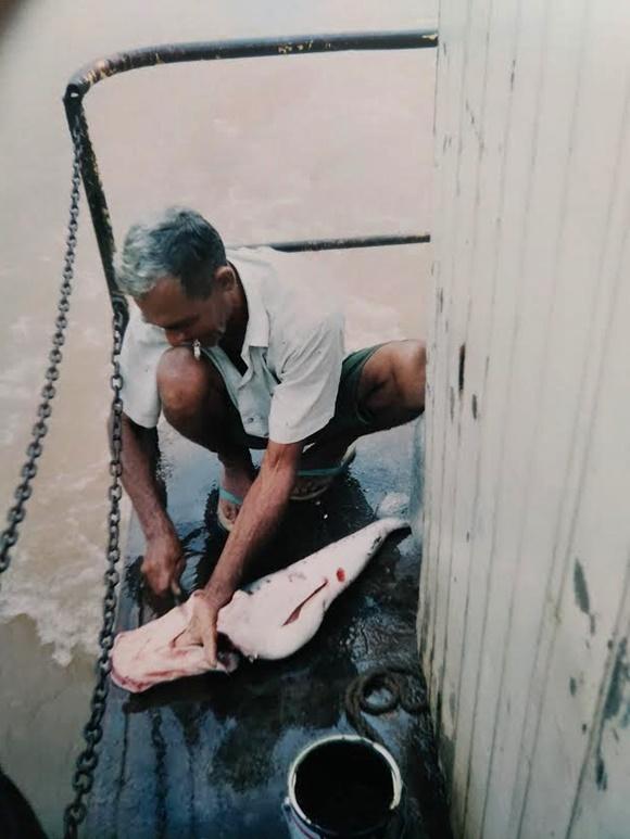 Homem abaixado, com um cigarro na boca, cortando peixe no canto do barco Blog Vem Por Aqui