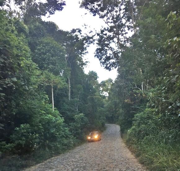 Carro com farol acesso passando em trecho de calçamento de pedra com árvores ao lado Blog Vem Por Aqui