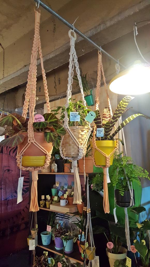 Vasos de flores pendurados no teto Blog Vem Por Aqui