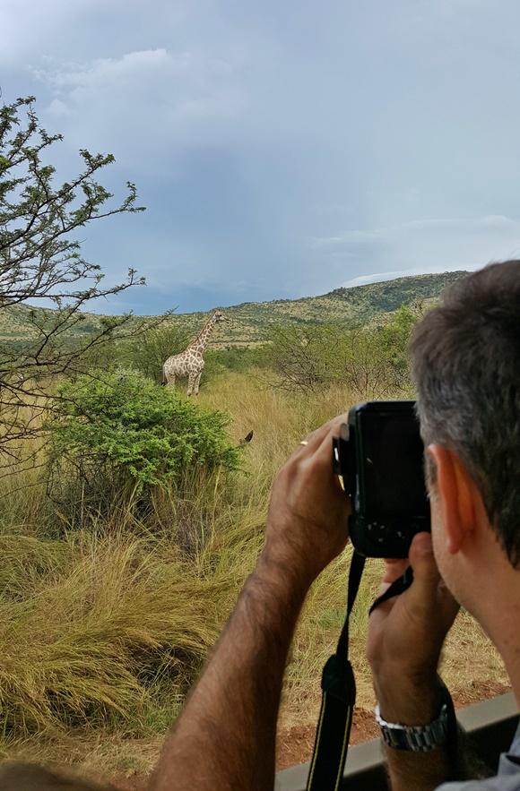 Homem de costas com uma câmera fotografando girafa na savana Blog Vem Por Aqui