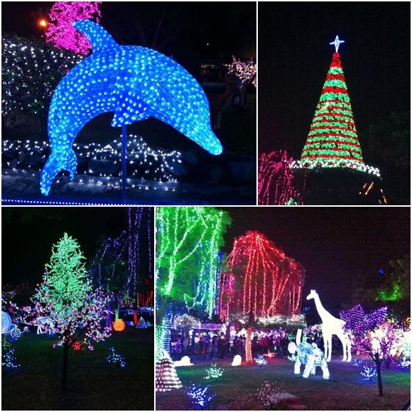 Mosaico com fotos das figuras do parque, primeiro um golfinho iluminado de azul, depois uma árvore de natal com uma estrela em cima, abaixo outras árvores e do lado girafa e outros animais no meio de árvores com luzes de várias cores Blog Vem Por Aqui