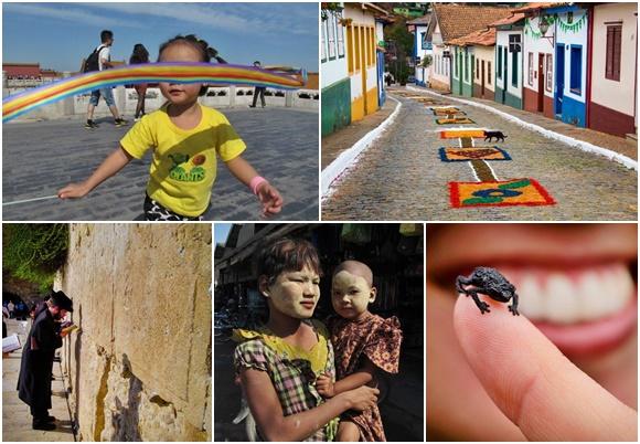 Mosaico com fotos que estão no livro: criança brincando com faixa de arco-íris na China, tapetes de Corpus Christi em Sabará, judeu no Muro das Lamentações, mãe e criança com rostos pintados de amarelo em Mianmar e pequeno sapo preto em cima de um dedo Blog Vem Por Aqui