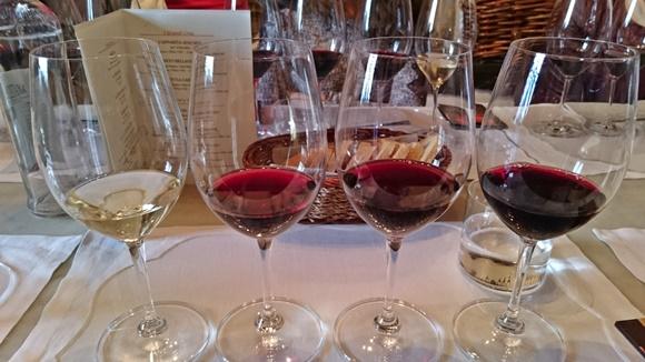 Quatro taças lado a lado com vinhos diferentes em cada Blog Vem Por Aqui