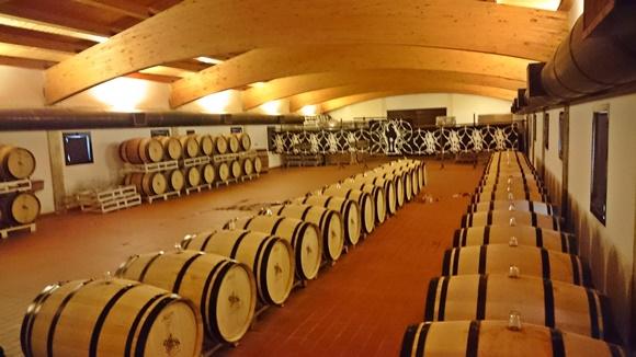 Barris de vinho do Castello di Ama