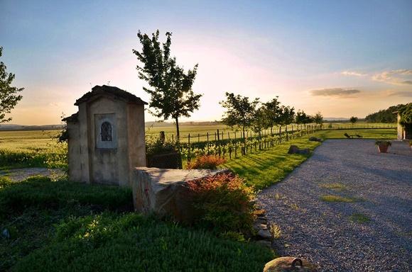 Poço em frente ao campo verde e ao lado de uma estrada Blog Vem Por Aqui