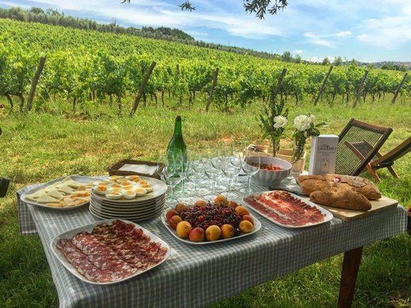 Mesa montada com frios, queijos e frutas, em frente a um vinhedo com cadeiras ao lado Blog Vem Por Aqui