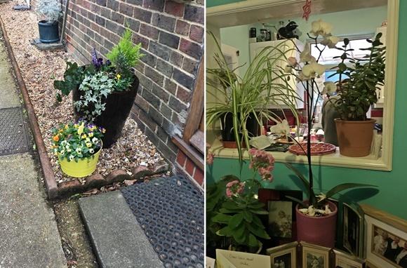 Mosaico com foto de floro em vaso do lado de fora de casa e outras do lado de dentro entre uma abertura da cozinha para a copa e numa mesa Blog Vem Por Aqui