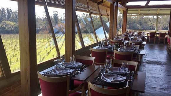 Restaurante com janelas de vidro que dão vista para os vinhedos Blog Vem Por Aqui