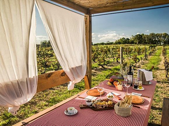 Mesa debaixo de um gazebo, no meio dos vinhedos com cortinas nas laterais, toalha quadriculada e produtos de piquenique Blog Vem Por Aqui