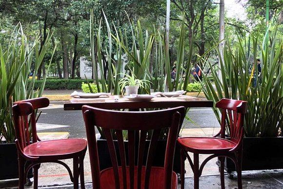 Mesa do restaurante com plantas do lado e árvores da pracinha em frente